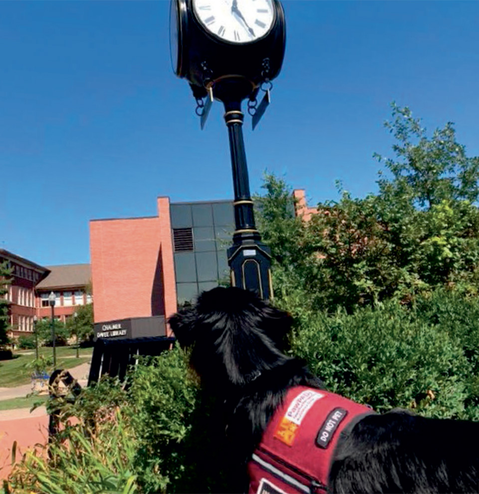 Sully is a service dog on the UW-River Falls campus.